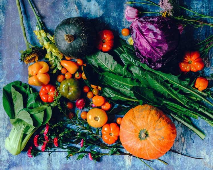 Is biologisch eten gezonder?